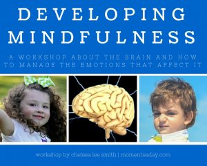 Developing Mindfulness workshop cover